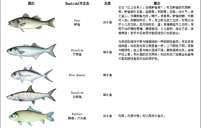 Fish - Simple English Wikipedia, the free encyclopedia